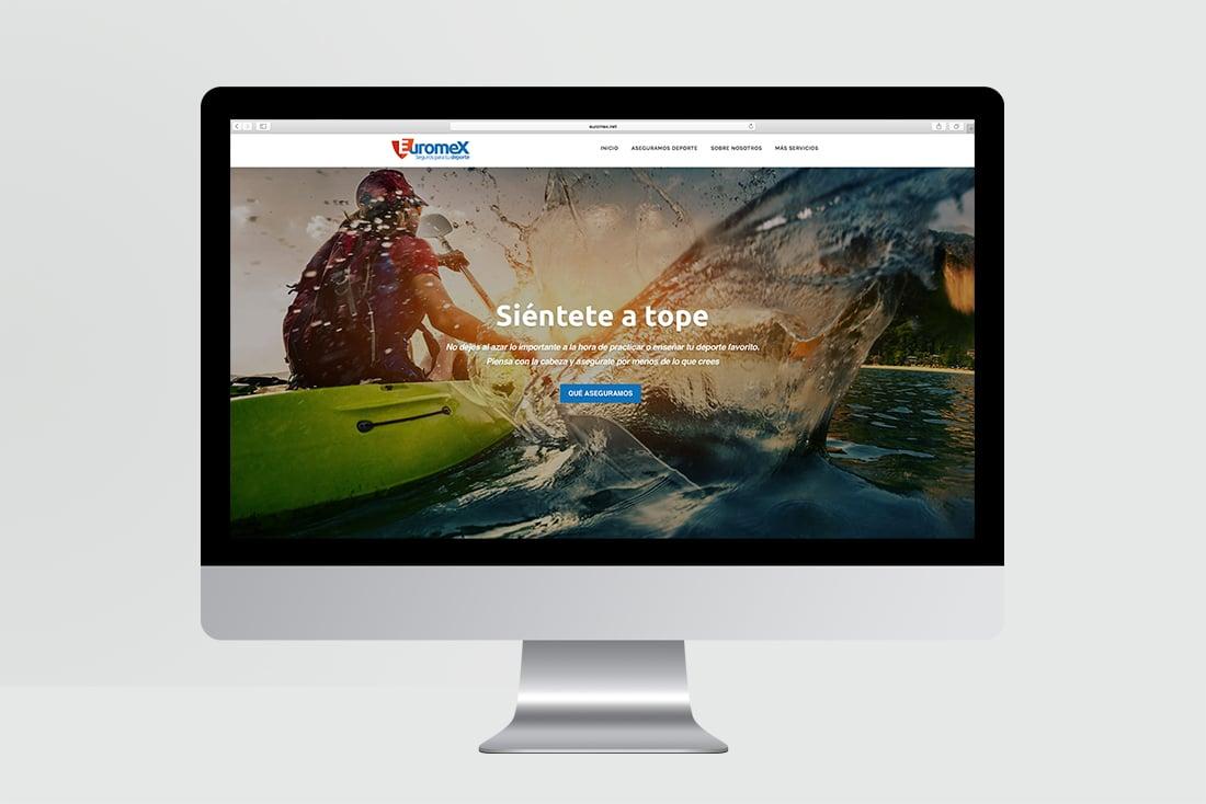 diseño-pagina-web-rto-euromex